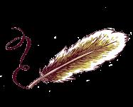 une plume illustre les exercecies à faire pour trouver son style